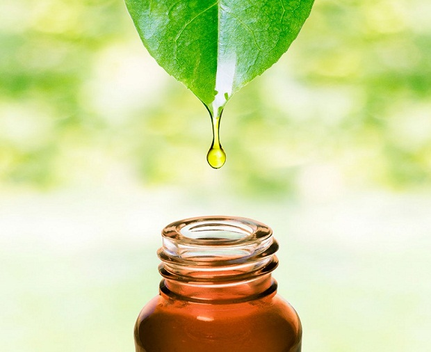 Introduction to Tea Tree Oil for Personal Health