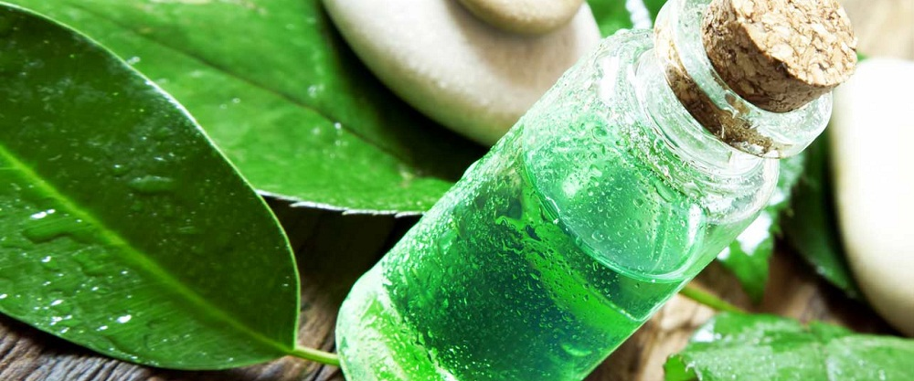 benefits of tree tea oil for health