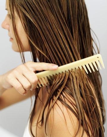 Do Not Comb Wet Hair