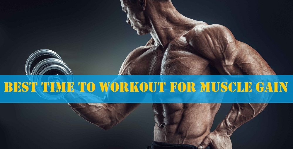 When Should You Work Out To Put On More Muscle Mass