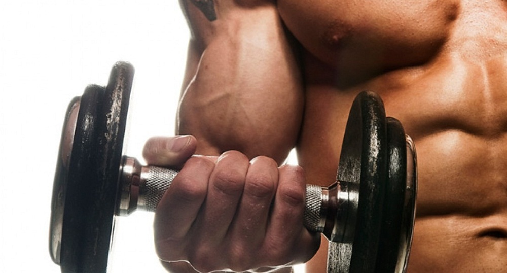 Specific Exercises That Will Help You How to Get Big Biceps Fast