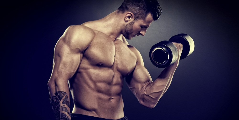 Why-You-Need-Fruits-and-Vegetables-to-Build-Muscle