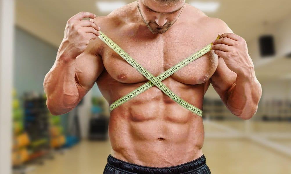 Plan d&#39;entrainement corporel en forme de V &quot;width =&quot; 1002 &quot;height =&quot; 600 &quot;/&gt; </p> <p style=